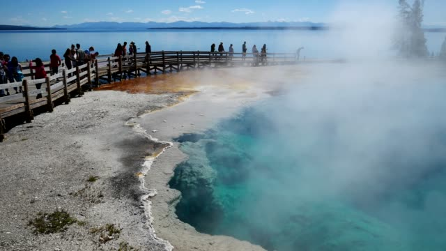 stockvideo's en b-roll-footage met yellowstone national park, wyoming, verenigde staten - yellowstone national park