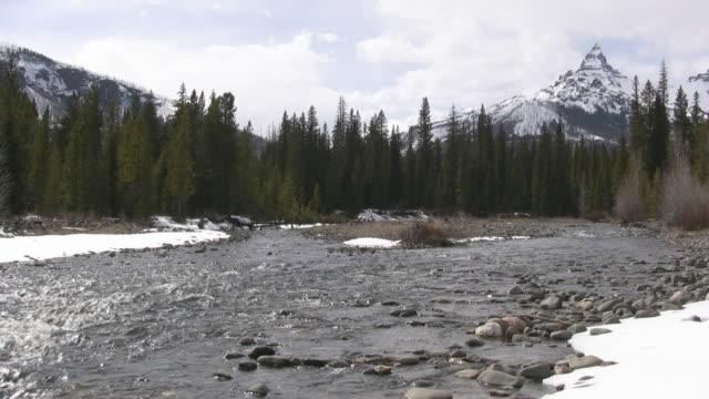 Yellowstone River video