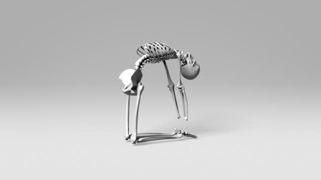 Yoga Camel Pose Of Human Skeletal video