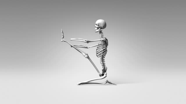 Yoga Heron Pose Of Human Skeletal video