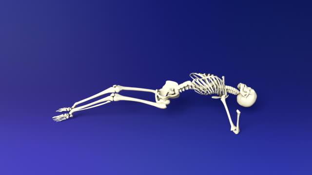 Yoga Upward Facing Pose Of Human Skeletal video
