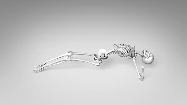 Yoga Upward Facing Pose Of Human Skeletal video