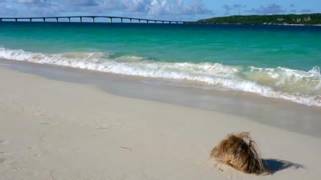 Yonahamaehama Beach in Miyako island, Okinawa,Japan video