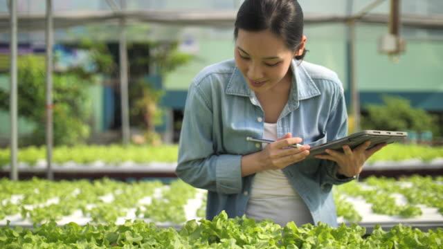 stockvideo's en b-roll-footage met yong freelance farmer - oost azië