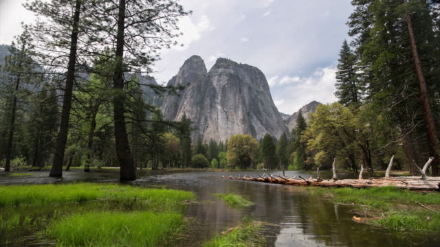 yosemite national park - parco nazionale video stock e b–roll