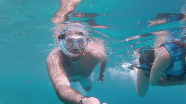 Young adult couple swimming underwater