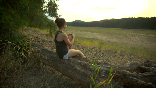 Young adult female hiker sitting on log overlooking a meadow video