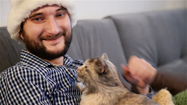 young adult man  with  cat look to camera video