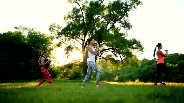 Young and attractive womans doing fitness exercises in park video