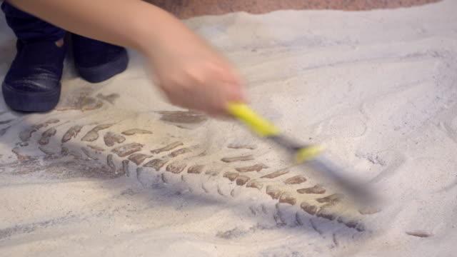 Jeune asiatique garçon jouant dans le sable au musée des Dinosaures - Vidéo