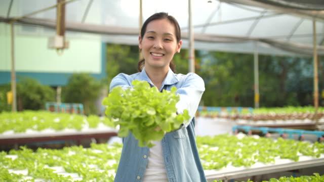 若いアジアの農家の女の子は、バスケットを保持し、水耕栽培農場で野菜を収集 - environmentalism点の映像素材/bロール