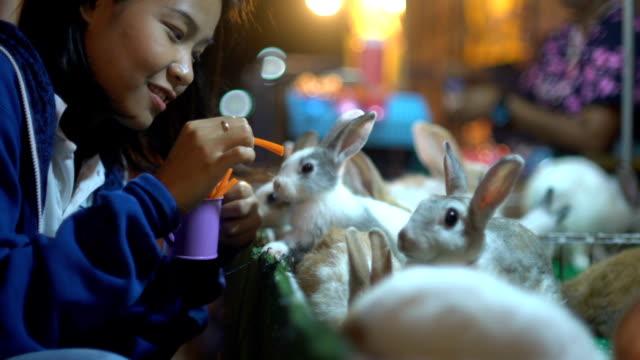 genç asyalı kadın tavşan havuç yakın çekim ile besleme - tavşan hayvan stok videoları ve detay görüntü çekimi