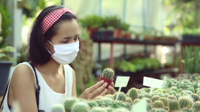 Young Asian Woman Picking Cactus and Succulents Green Plants Tree Botanic. Green Concept.