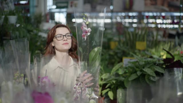 young attractive female flower grower with glasses for vision chooses decorative flowering houseplant, in pots in greenhouse of shop for interior decoration of house or garden - direttrice video stock e b–roll