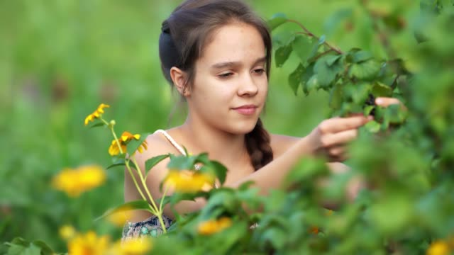 Young attractive girl collecting harvest in garden
