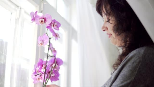 junge attraktive frau, die auf ein fenster fensterbank lila orchidee - orchidee stock-videos und b-roll-filmmaterial