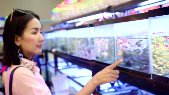 Young Beautiful Asian Woman Looking and Interesting Observing Small Fish in Tank at the Pet Shop. Young Beautiful Asian Woman Looking and Interesting Observing Small Fish in Tank at the Pet Shop. freshwater stock videos & royalty-free footage