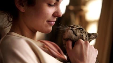 una ragazza giovane e bella sta giocando con un gatto gentile e grigio. si gratta le orecchie, accarezza . felice. interno - carino video stock e b–roll