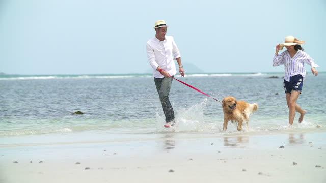 海辺のスローモーションを自分の犬と遊ぶ若い美しい愛情のあるカップルを撮影しました。 - 犬点の映像素材/bロール