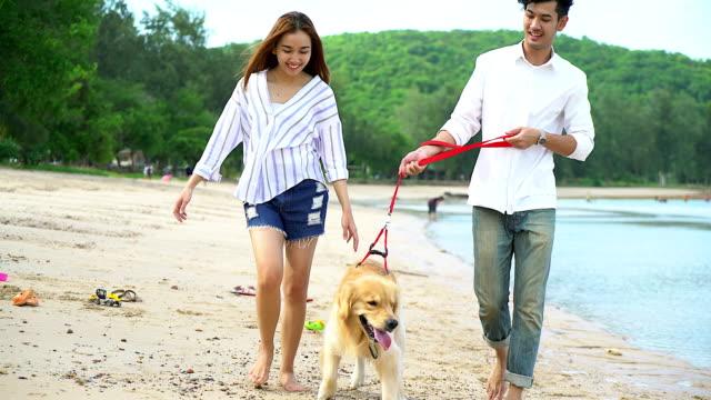 unga vackra älskande par leker med sin hund vid havet. - hunddjur bildbanksvideor och videomaterial från bakom kulisserna
