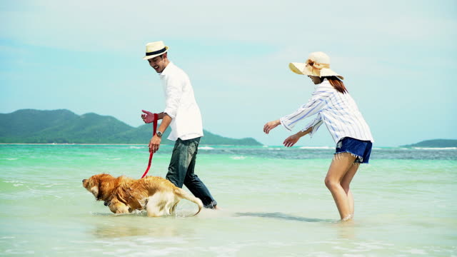 Young beautiful loving couple playing with their dog at the seaside.