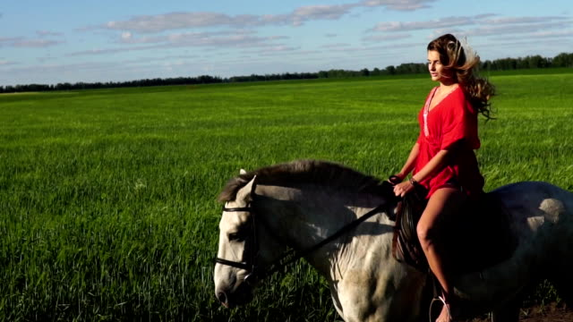 Young beautiful woman rider riding a white horse on the field video