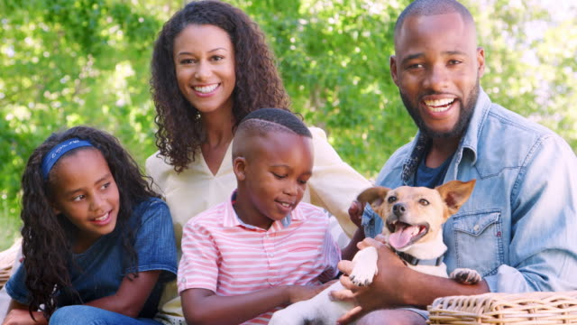 Young black family sitting with pet dog in the garden Young black family sitting with pet dog in the garden panting stock videos & royalty-free footage