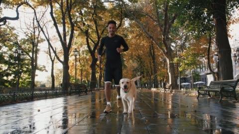 vidéos et rushes de jeune homme noir fonctionnant avec son crabot blanc de labrador par le parc de ville pendant beau matin d'automne, mouvement lent - marcher
