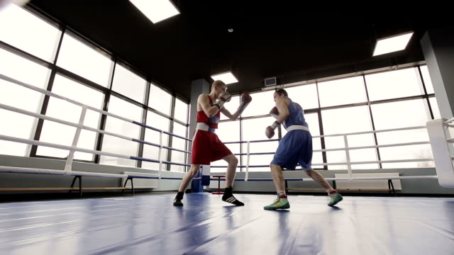 Young boxers have a fight at ring in boxing club video