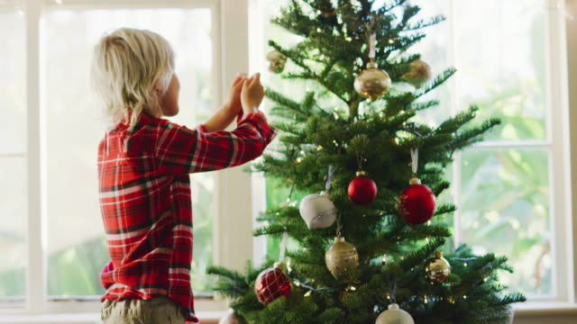 Young Boy Decorating Christmas Tree Cute young boy hanging ornaments on christmas tree christmas stocking stock videos & royalty-free footage
