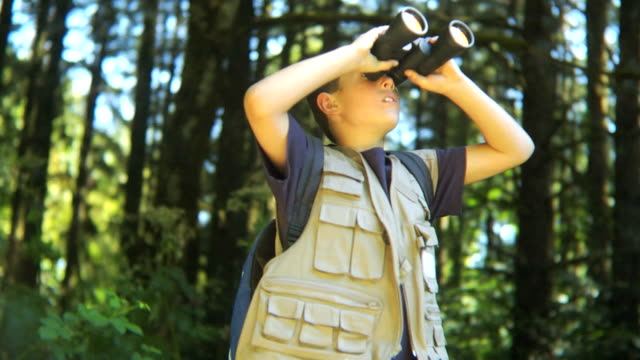 Young boy in forest looking through binoculars video