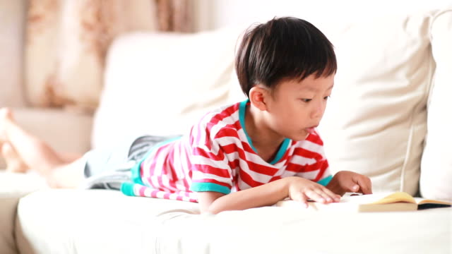 Young boy reading a book video