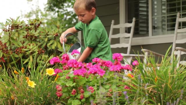 vídeos y material grabado en eventos de stock de young boy deliciosos flores - tareas domésticas