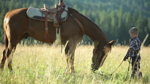 молодой мальчик с лошадь - запад стоковые видео и кадры b-roll