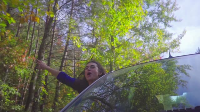 Young brunette woman leaning out of car window while driving through forest slow motion Traveler looking out from car window enjoy road trip russian ethnicity stock videos & royalty-free footage