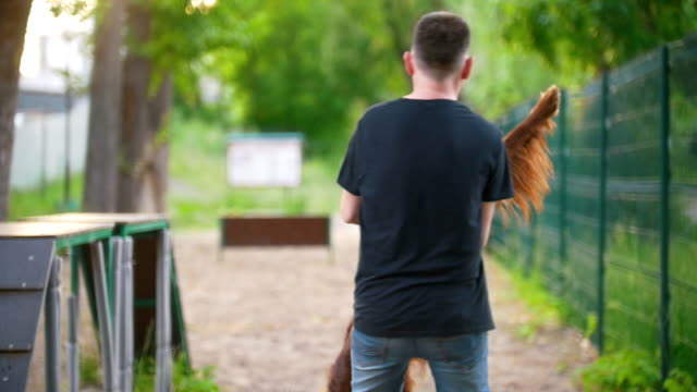 Young caucasian man whirling with his dog breed red irish setter in arms in summer park Young caucasian man whirling with his dog breed red irish setter in arms in summer park, slow motion irish setter stock videos & royalty-free footage