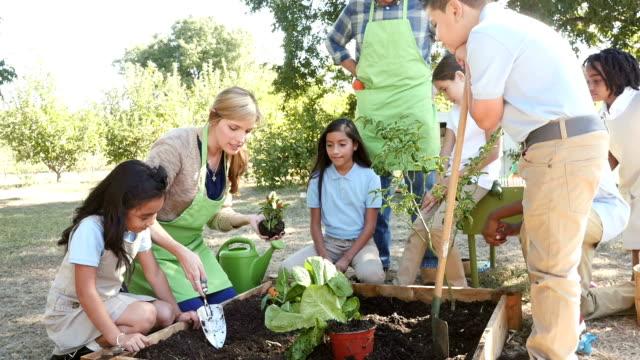 Una joven mujer caucásica enseña elemental estudiantes cómo pimienta planta A planta - vídeo