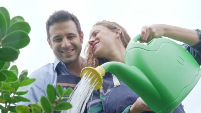 Young couple arranging and watering together very smiling the garden of their house. (slow motion)