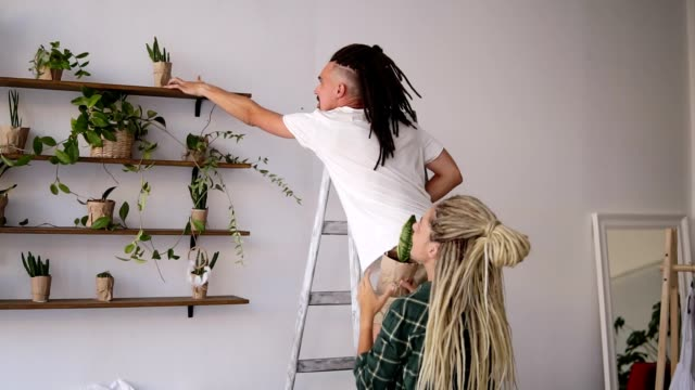 Young couple arranging home stuff together. Man standing on ladder and place the plants on shelf. His beautiful dreadlocked girlfriend giving him plants. New flat. Rare view. Slow motion video
