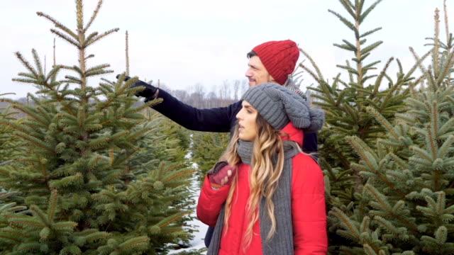 unga par att välja julgran - christmas tree bildbanksvideor och videomaterial från bakom kulisserna