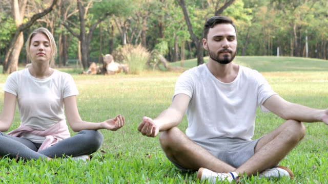 Young Couple do yoga relax in a park on a sunny day.  lifestyle Healthy and Yoga concept. Slow Motion Young Couple do yoga relax in a park on a sunny day.  lifestyle Healthy and Yoga concept. Slow Motion lotus position stock videos & royalty-free footage
