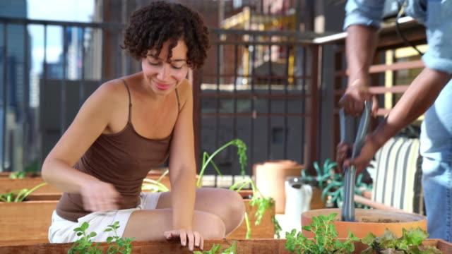 Young couple gardening together in an urban setting video