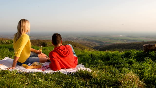 Young couple having a picnic in nature Young couple having a picnic in nature, enjoying the view. picnic stock videos & royalty-free footage