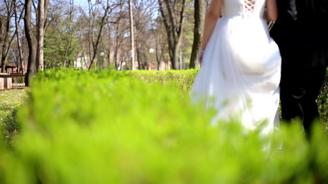 Young couple in love bride and groom, wedding day in summer.