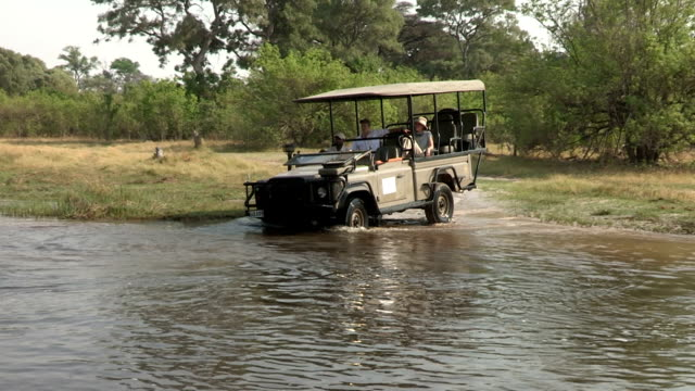 junges paar auf safari fahrzeuge mit safari-guide-kreuzung-fluss im okavango, botswana - großwild stock-videos und b-roll-filmmaterial