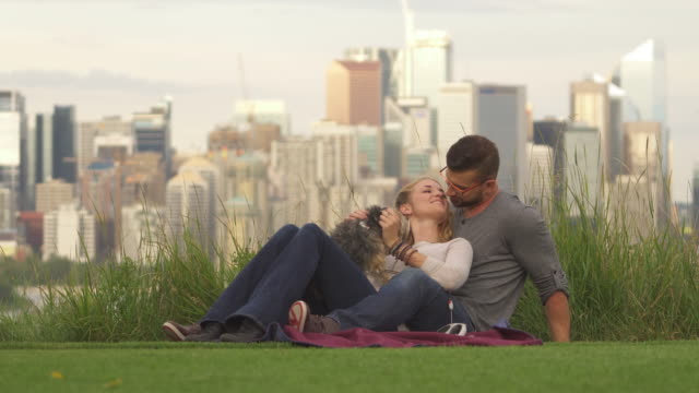 young couple play with dog in city park, skyline behind - brunette woman eyeglasses kiss man video stock e b–roll