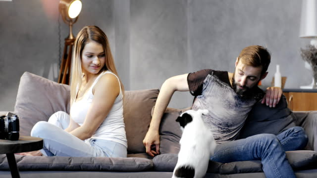 Young couple quarreled and sitting in different directions on couch with dog video