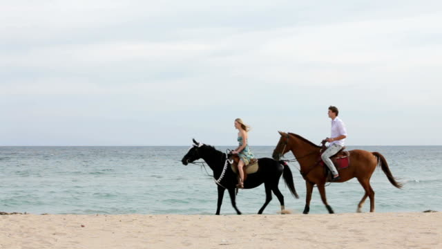 Young Couple Riding Horses On The Beach video