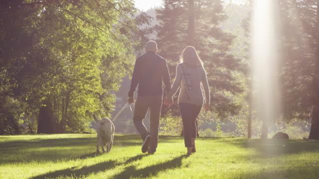 young couple walking dog in park - 30 39 lat filmów i materiałów b-roll