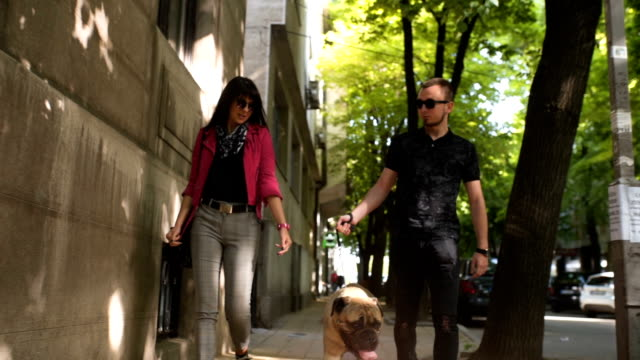Young couple walking dog video